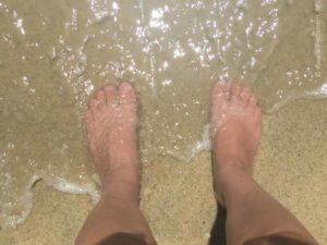 taman negara pulau pinang penang turtle beach