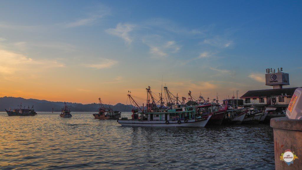 KK Fishmarktet