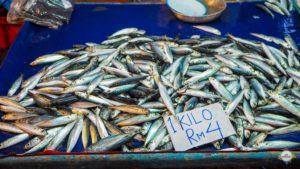 Fishmarkt KK
