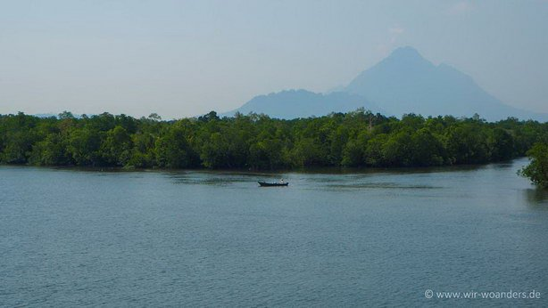wetlands_borneo_sarawak