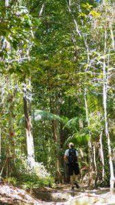 taman negara pulau pinang penang