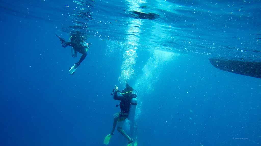 open_water_diving_perhentian_islands_padi