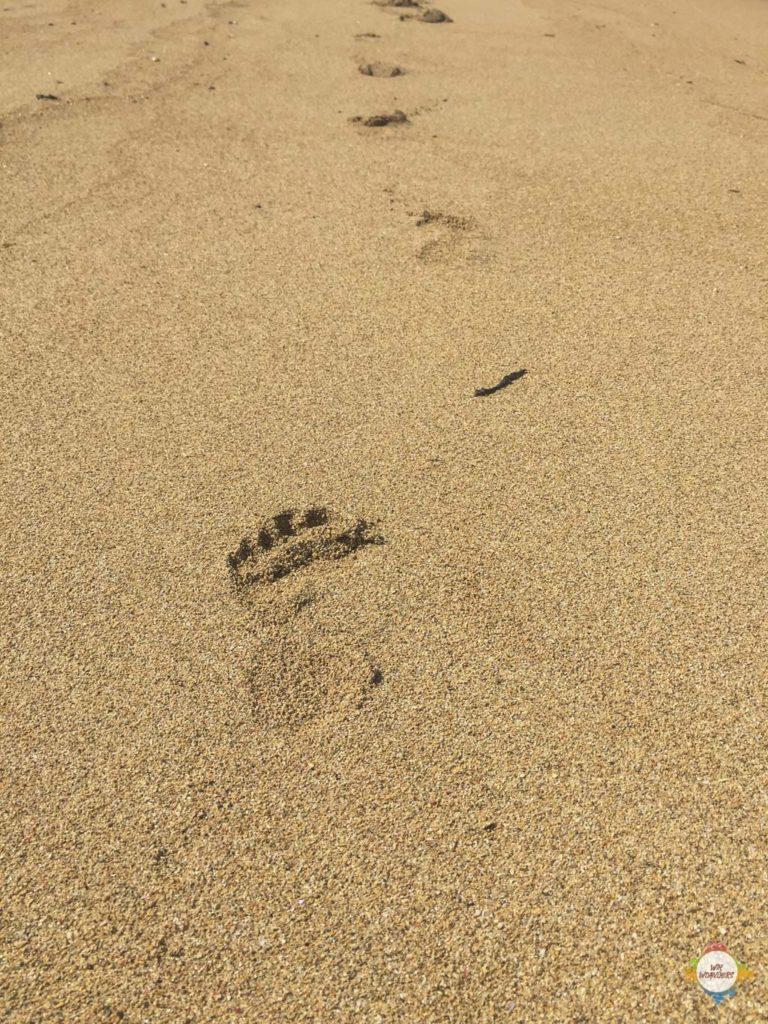 sanur_bali_beach