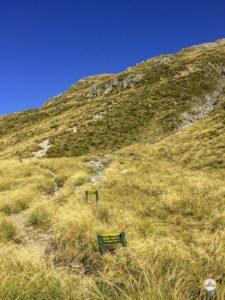 way to mueller hut