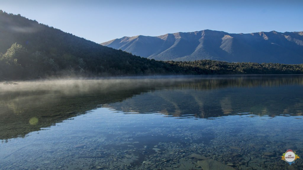 morning glory at Lake Rotoiti