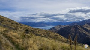 roadtrip nz wanaka