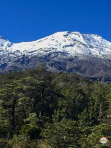 ohakune_tongariro_nationalpark