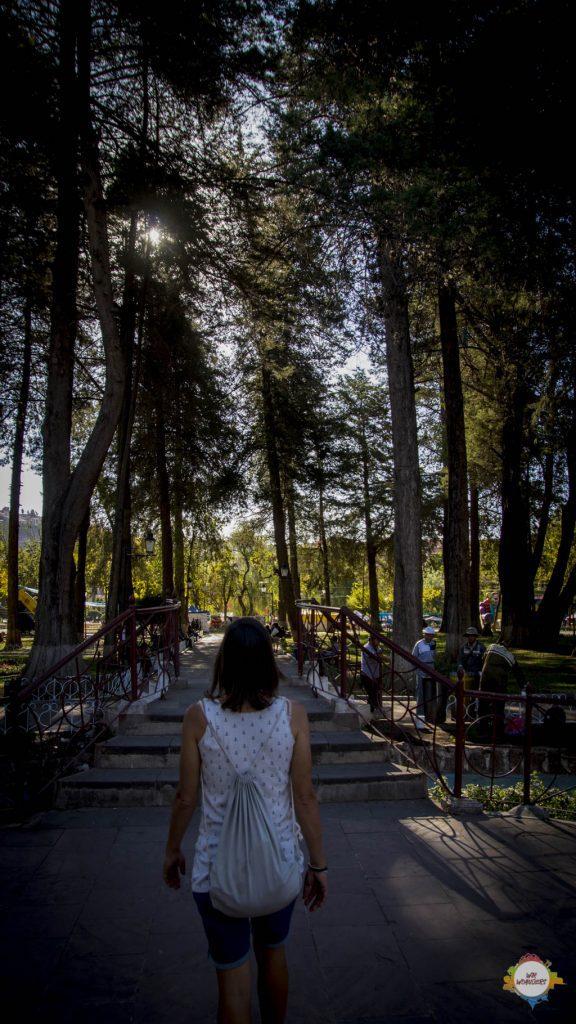 Parque Libertador Simón Bolívar sucre