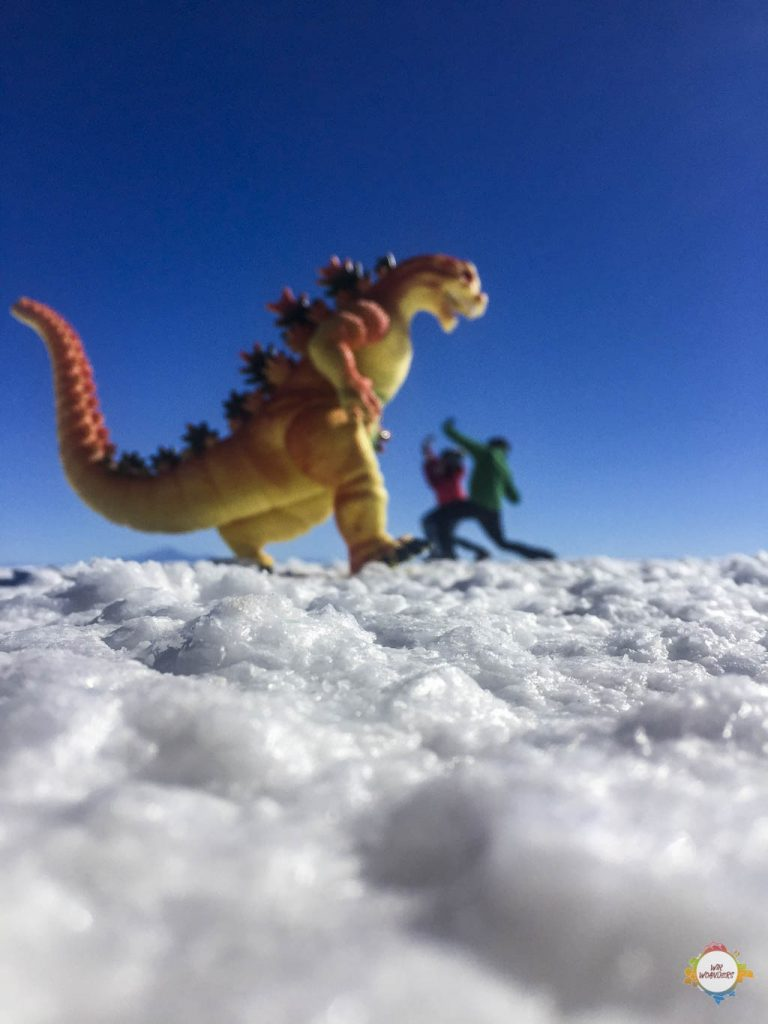 dragon alert uyuni