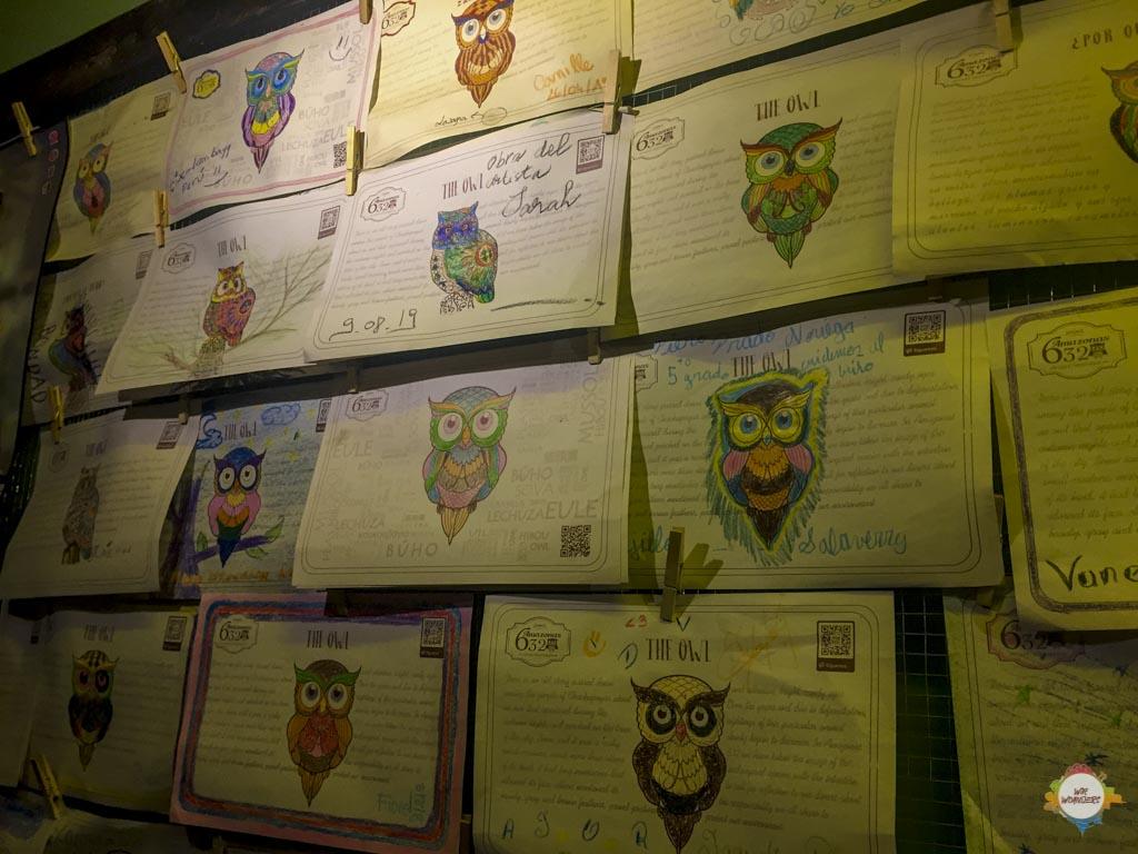 Chachapoyas Owl